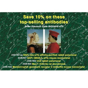 Antibodies - Save 10%