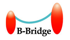 B-BRIDGE INTERNATIONAL, INC